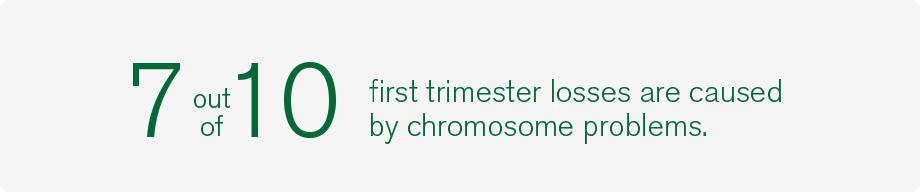 Genea first trimester stat